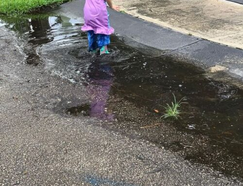 Jump In The Puddles
